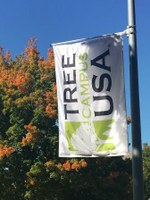 Tree Campus USA