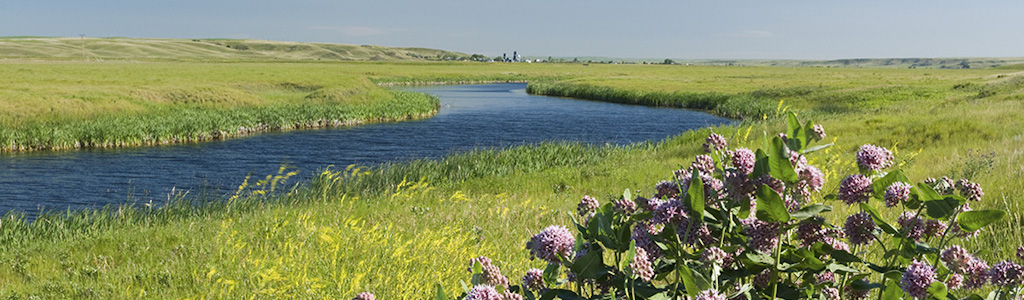 river floodplain in sheridan county