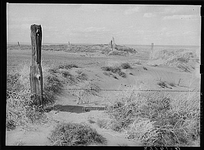 Big Horn County fence during Dust Bowl
