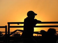 Kid at fence silhouetted by sun