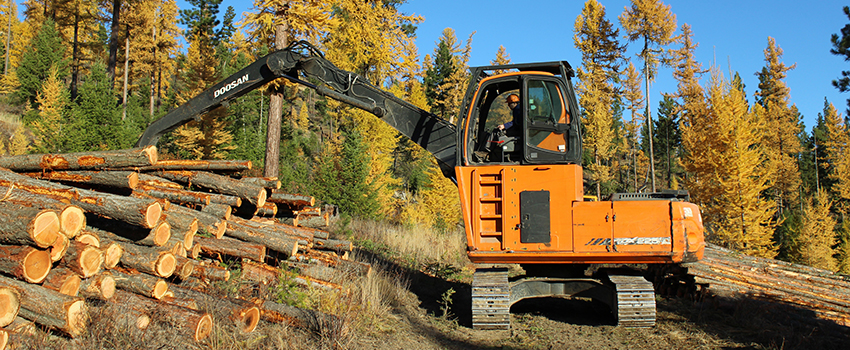 Governor Bullock Unveils New Forestry Stewardship Partnership