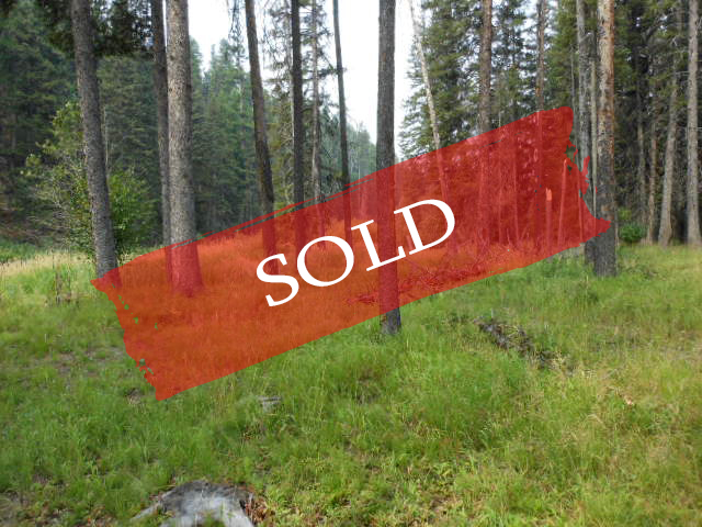 SOLD Sale 769